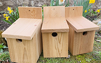 10 x Bird Boxes