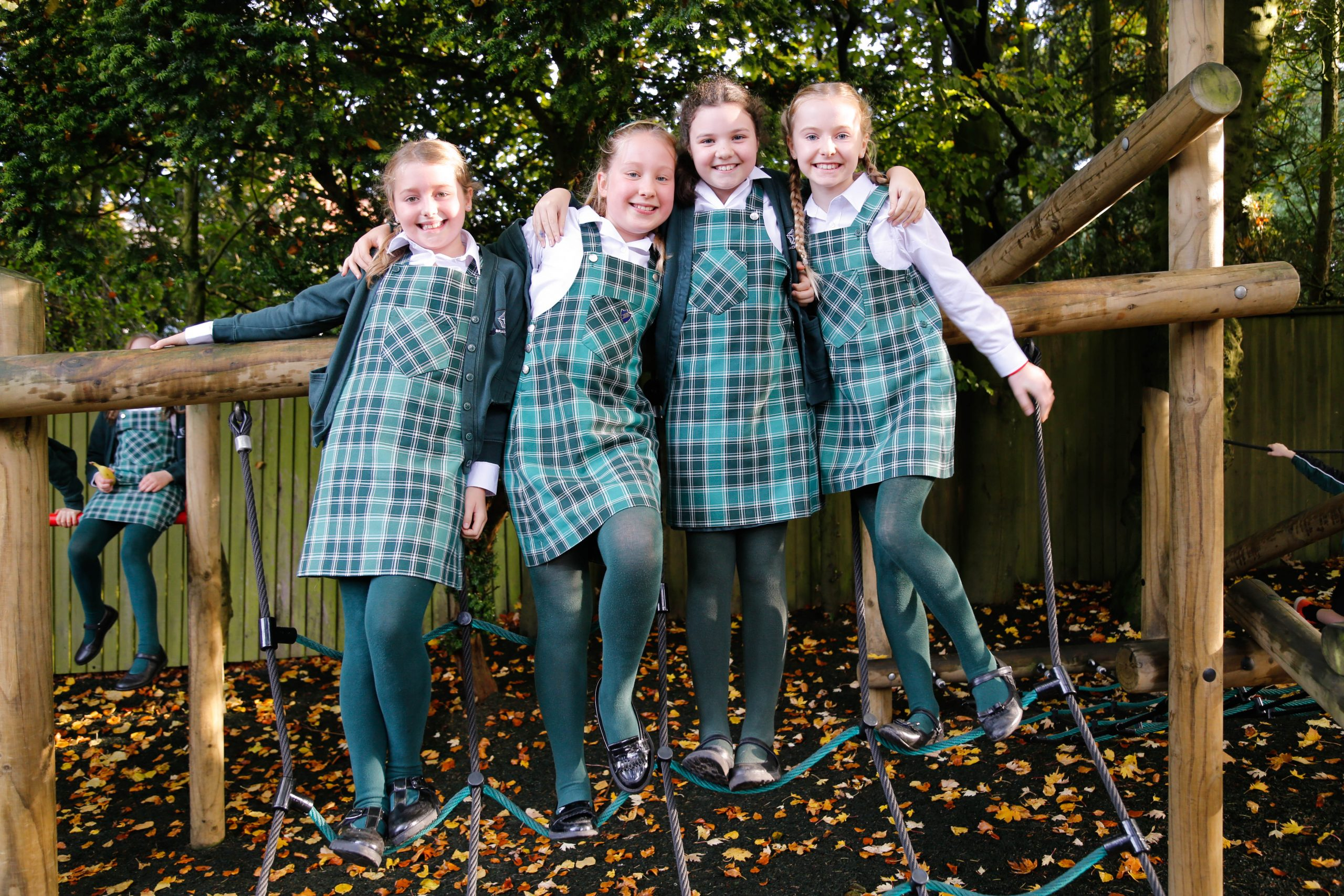 Brackenfield School – School of the Week